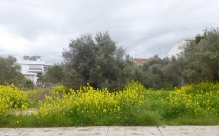 For Sale: (Residential) in Latsia, Nicosia  | Key Realtor Cyprus